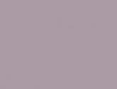 2010082414828583-pale-mauve