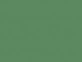 2010082433238449-cypress