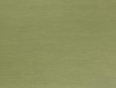 201009095374850-wasabi