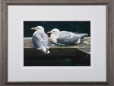 Art, paintings - Bateman print from Framed in The Village, Oklahoma City