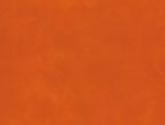 2010090959624229-tangerine-twist