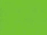 2010090986124231-cyber-green