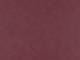 20100912476848483-tudor-red